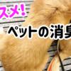 【愛犬家の愛用品】オススメ!ペットの消臭剤