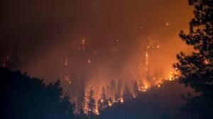 今、世界中で多発している「山火事」って英語でなんて言う?