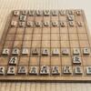 将棋の風変わりな囲いとマイナー戦法
