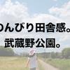 【育児】東京なのにこの田舎感。武蔵野公園。【公園】