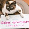 【週末英語#143】「Golden opportunity」は絶対に逃すことのできない「千載一遇のチャンス」