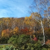 八幡平山で調査をしてきた話2「秋田で調査の後に岩手へ」
