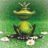 『カエルの王様、または鉄のハインリヒ』ハインリヒよ、おまえはいったい何者だ