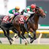 【アイビスSD想定騎手】モントライゼは川田将雅騎手、ライオンボスは鮫島克駿騎手