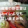 冷蔵庫の野菜室はトイレよりもバイ菌まみれ?!お手入れと除菌を徹底解説