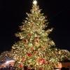 【鑑賞?】2018年 都心イルミネーション巡り:規模が圧倒的な都内のクリスマス!