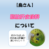 【鳥さん】肝臓の病気 脂肪肝症候群【爪やくちばしの内出血は肝臓が悪いサイン!?】