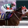 【父:オルフェーブルほか(関東入厩)】2021年度キャロットクラブ募集確定馬の種牡馬別評価(17)【一口馬主】