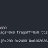 pcapをパースする(その3・IP/ICMP編)