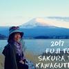 河口湖畔から望む 満開桜と雄大なる雪帽子の富士山