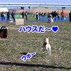 JKC 埼玉ブロック 2