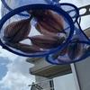 LTアジで釣った大量のアジを干物にしてみた