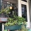 土日オープンの素敵なカフェAlex&Beth Bangkok@旧市街