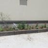 夏の花壇づくり