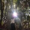 読むだけで目醒める★ご神事レポ♡〜集合意識のブロックを外し世界を光で包む〜