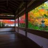 京都・槇尾 - 朝日差し込む西明寺