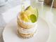 温泉メロンを超堪能!スイーツカフェ扇屋製菓のメロンショートケーキ / 南伊豆町