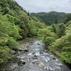 令和元年初日に愛宕神社と餃子の王将発祥の地を参詣したよ
