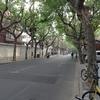 上海旅行二日目(3)。山陰路から四川北路。日本人居住者の痕跡と空気