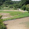 今日は天気が良かった。マイナスイオンを浴びに久々に新治里山へ行ってきました。