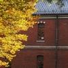 いしかわ四高記念公園の紅葉