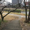 京都・三条大橋辺りの眺め