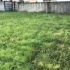 【来年に向けての肥料作り】簡単!雑草を肥料にする方法