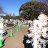 上野動物園19回目 シャンシャンを見ました!