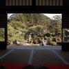 妙満寺の雪の庭、雪景色と新緑の光景。