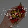 1413食目「フルーティ?な小さなカワイイ唐辛子」その名はビキーニョ。