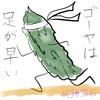 『凪のお暇』ゴーヤの素揚げがおつまみに最適な話と足の早いゴーヤの保存方法【なんちゃって薬膳】
