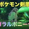 【ポケモン剣盾】ガラルポニータ出現場所・進化先・色違い