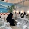 くまモン 熊本にある世安湯に出没