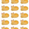 丸くなった猫の中に1匹だけ違う猫が・・・