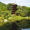 『瑠璃光寺五重塔』の考察〜 (秋の古建築弾丸ツアー)