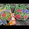 岐阜県郡上市でマンホールカードを集めてきました![2枚]