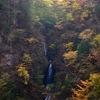 秩父の知られざる名瀑!丸神の滝を撮影してきました。