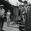 歌謡映画3題 松山恵子『未練の波止場』平尾昌章『星は何でも知っている』藤圭子『藤圭子 わが歌のある限り』