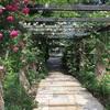 Andy&Williams Botanic Garden