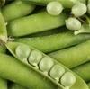 手軽に食べられる豆の色々☆ 身近にある豆ってどんなもの?