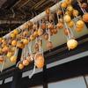 初秋(?)の神戸「あいな里山公園」