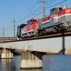久々に鶴見川橋梁 -HD300形甲種輸送-
