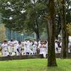 「球秋」到来! ─ 秋季富山県高等学校野球大会 ─