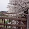 和日本人結婚之第三步。日本人と結婚するその3。