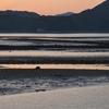 羊角湾の干潟