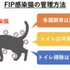 猫の致死的な感染症⁈『猫伝染性腹膜炎(FIP)』って何?③~治療法・予後・管理~
