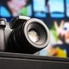 野鳥撮影初心者のカメラは「望遠」にこだわるべきたった1つの理由