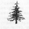 第6章  地元と国有林 第29話「山の神」