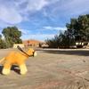サハラ砂漠1泊2日の現地ツアー!①:砂漠の街でカフェごはんと羊毛フェルト(世界の猫探し243匹目)