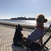 トリップアドバイザーで「愛犬と行く!旅リスト」を作ってみた!